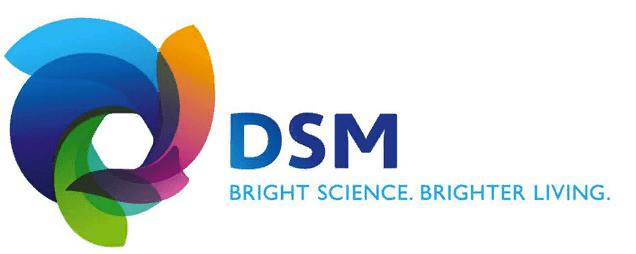 dsm-2-logo